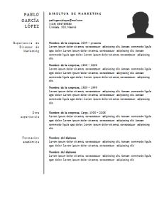 Plantilla de curriculum: plantilla funcional 2