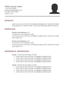 Plantilla de curriculum: plantilla cronológica 8