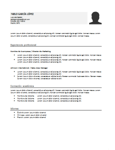 Plantilla de curriculum: Plantilla funcional 7