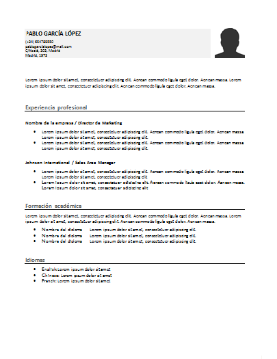 Plantilla curriculum funcional 7